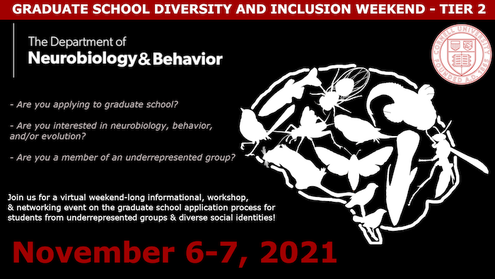 Poster for Diversity Inclusion Weekend